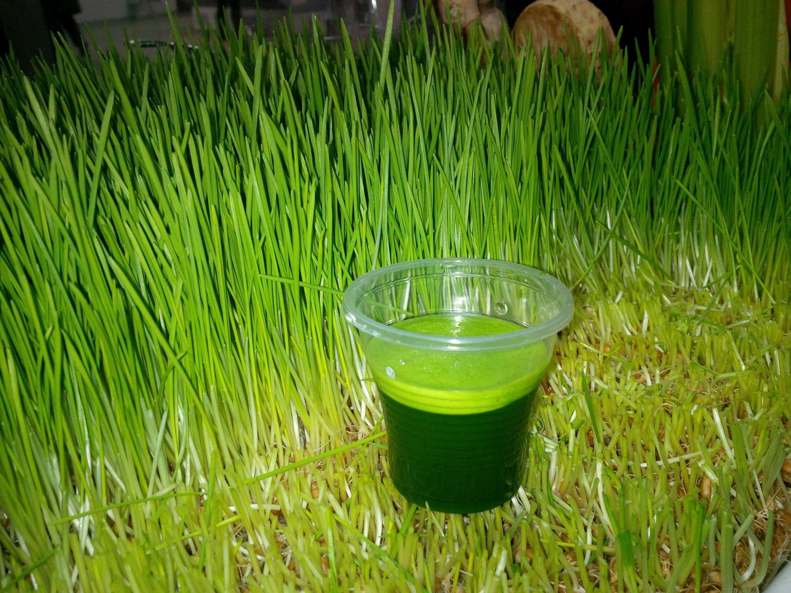 Suc natural din iarba de grau